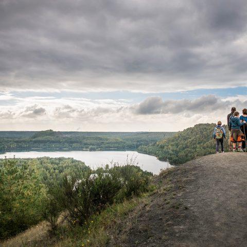 Hoge Kempen National Park - Domaine La Butte aux Bois