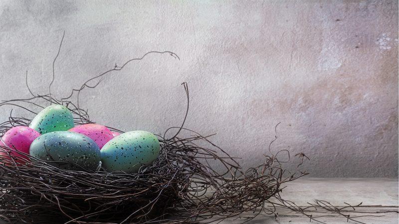 Easter, spring festival for the wholefamily