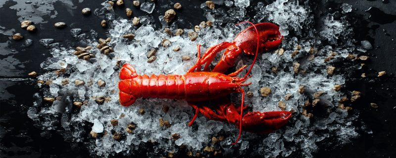 Lobster & Champagne