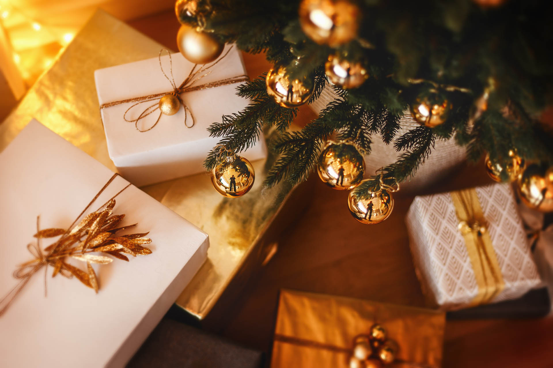 Kerstfeest Maasmechelen - Domaine La Butte aux Bois