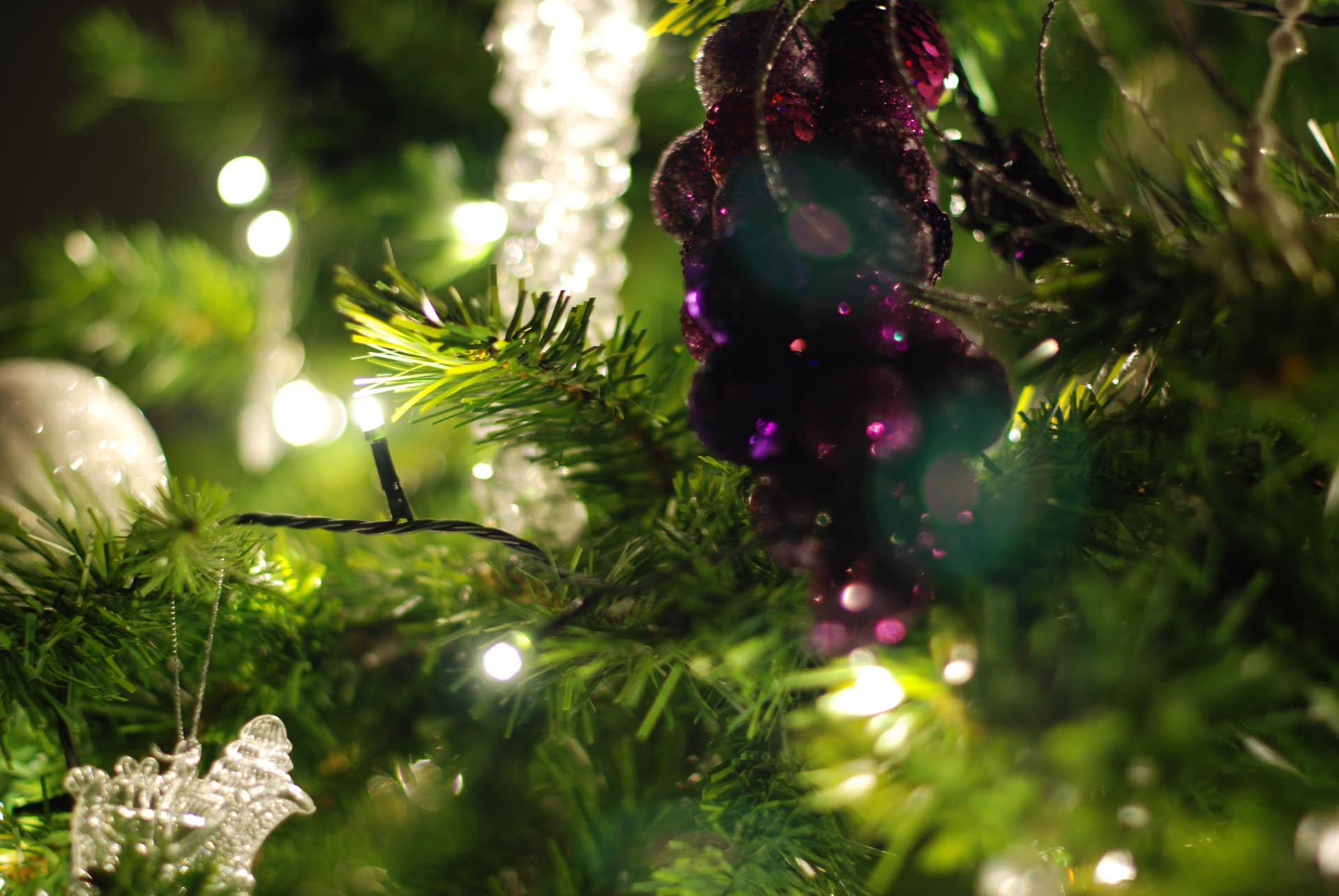 Kerstfeest Voeren - Domaine La Butte aux Bois
